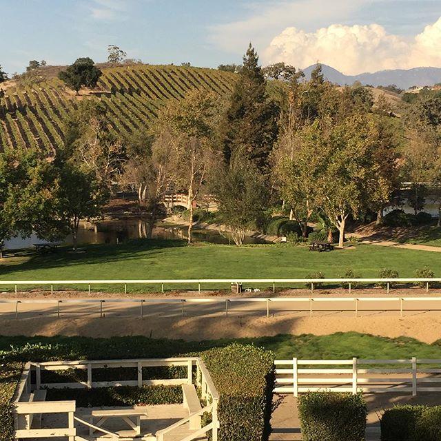 beautiful scenic wine tours